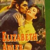 ELIZABETH ADLER - SECRETE DE FAMILIE - Roman