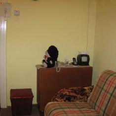 Bascuta neagra - Basca Dama