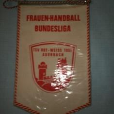 280 Fanion Handbal Feminin Bundesliga (Germania)