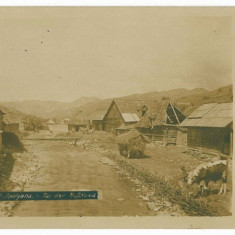 1581 - Maramures, RUSZPOLYANA, country house - old postcard, real PHOTO - unused - Carte Postala Maramures 1904-1918, Necirculata, Fotografie