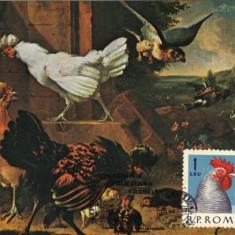 Ilustrata maxima, fauna, cocos, gaini - Timbre Romania