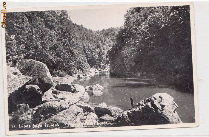 B11201 Targu Lapus  circulata 1915 foto mare