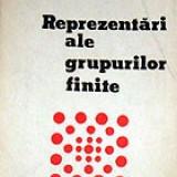Manual scolar, Matematica - Reprezentari de grupuri fimite - Serban Barcanescu