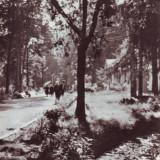 R2762 Baile Moneasa Parcul circulat 1963 RPR