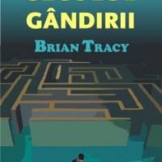Brian Tracy - Secolul gandirii (audiobook)