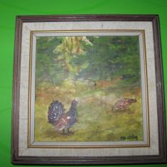 Tablou, Animale - COCOS DE MUNTE, veche pictura in ULEI pe placaj semnata de pictor suedez