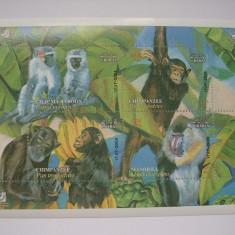 Timbre straine - Iran 2004 fauna maimute mi bl.40 ( 2976-2979)