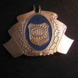 BDEP - EMBLEMA MILITARA - PIESA DE COLECTIE