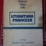 Literatura franceza dictionar istoric critic