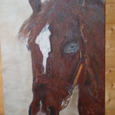 ,, Brown''Tablou pictat manual in culori acrilice pe panza (Cal), Animale, Altul