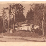CPI (B1768) TUSNAD, CANTINA NR. 2, CIRCULATA 3 AUG 1958, STAMPILE, TIMBRU IMPRIMAT, RPR