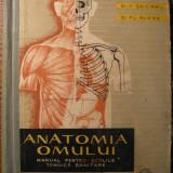 Manual scolar - Carte - Dr. V. Ranga, Dr. T. Seicaru, Dr. Fl. Alexe - Anatomia omului - manual pentru scoliile tehnice sanitare - editia II