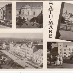 Carti Postale Romania dupa 1918 - RPR, CP circulata 1960, Satu Mare, colaj