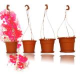 Ghiveci cu agatatoare GH3 - ghivece flori