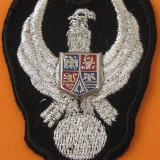 Insigna tehnic aviatie pentru costumul de zbor (combinezon), clasa 0 (neclasificat)