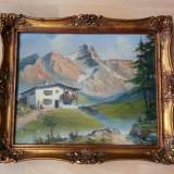 Tablou pictat in ulei pe panza cu munti 60cm/50cm cu semnatura anul 1956