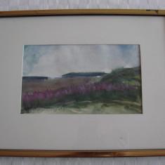 Impresionanta realizare artistica, acuarela pe hartie, semnata si datata - Pictor roman, Peisaje, Impresionism