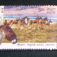 Timbru stampilat - uzat - INDIA - FAUNA - ANIMALE - ASIN - MAGAR - 2013 - 2+1 gratis toate produsele la pret fix - CHA848 - Timbre straine, Asia, Natura