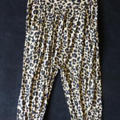 Pantaloni ¾ H&M imprimeu leopard; marime 146: 64-72 cm talie usor elastica etc. - Pantaloni dama H&m, Marime: Alta, Culoare: Din imagine