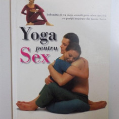 YOGA PENTRU SEX de VIMLA LALVANI, 2004 - Carte Hobby Ezoterism