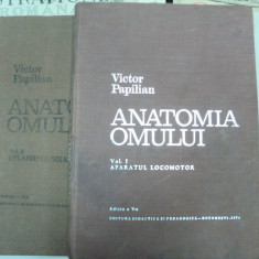 ANATOMIA OMULUI. VICTOR PAPILIAN, VOL I-II