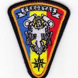 Emblema militara - cercetas (cercetare)