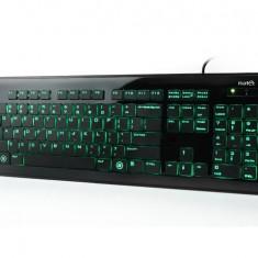 Tastatura Natec Zander iluminata, USB 2.0, neagra