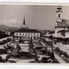 SIGHET, PIATA UNIRII - Carte Postala Maramures dupa 1918