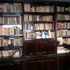 Biblioteca lui Bachus - Gheorghe Stefanescu - Biblioteca living