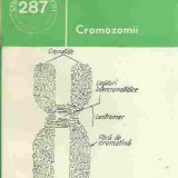 Ion Anghel, Nicolae Toma - CROMOZOMII - Carte Biologie