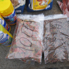 Hrana pesti exotici tetra diskus, troco, mixtura, granular 100gr - Mancare pesti