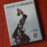 Film - Destine la rascruce !!! - Film Colectie, DVD, Altele
