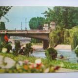 Carte postala / Timisoara, pod peste Bega (anii 80), Necirculata, Fotografie, Romania de la 1950