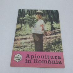 Revista/Ziar - REVISTA APICULTURA ÎN ROMÂNIA NR. 4-APRILIE 1988