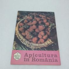 Revista/Ziar - REVISTA APICULTURA ÎN ROMÂNIA NR. 3-MARTIE 1988
