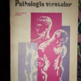 Psihologia varstelor- Ursula Schiopu,Emil Verza