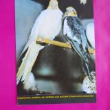 Carti Postale Romania dupa 1918, Necirculata, Printata - HOPCT 21050 COMPLEXUL MUZEAL STIINTE ALE NATURII -JUD CONSTANTA [NECIRCULATA]
