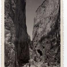 CHEILE BICAZULUI ANIMATA, CARUTA, FOTOFILM NR 3, BEKAS SZOROS - Carte Postala Transilvania dupa 1918, Circulata, Fotografie