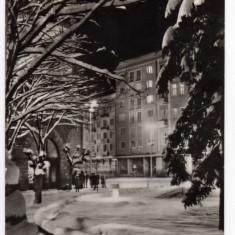TARGU MURES PIATA TRANDAFIRILOR IARNA, RPR, - Carte Postala Transilvania dupa 1918, Circulata, Fotografie
