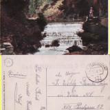 Campulung Moldovenesc ( Bucovina , Suceava )-cenzura WWI