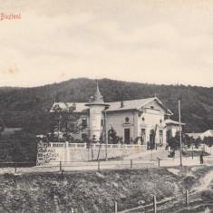 BUSTENI, COLOSEUL BUSTENI - Carte Postala Muntenia dupa 1918, Necirculata, Printata