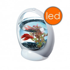 Acvariu - Bol Tetra Betta Ring 1 8 L