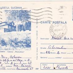 Bnk cp Jud Suceava - Iacobeni - Cabana Mestecanis - circulata - marca fixa - Carte Postala Bucovina dupa 1918, Printata