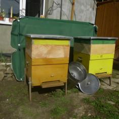 Vand lazi albine verticale - Apicultura
