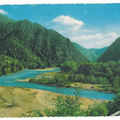 Carte Postala, Necirculata, Printata - 7405 - Romania ( 63 ) - Valcea, OLT valley - postcard - unused - 1967