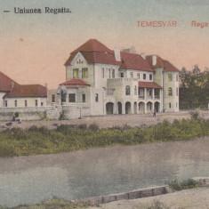 TIMISOARA, UNIUNEA REGATTA - Carte Postala Banat dupa 1918, Necirculata, Printata