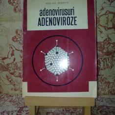 Adelina Derevici - Adenovirusuri Adenoviroze