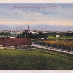 SIBIU, CIRCULATA OCT. *916, MILITARA - Carte Postala Transilvania 1904-1918, Printata