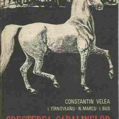 Constantin Velea - CRESTEREA CABALINELOR