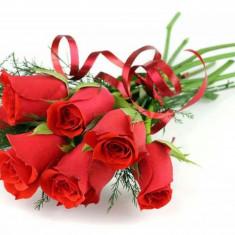 Zambet, Dragoste, Respect... - Trandafir